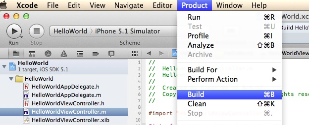 Xcode Build Option