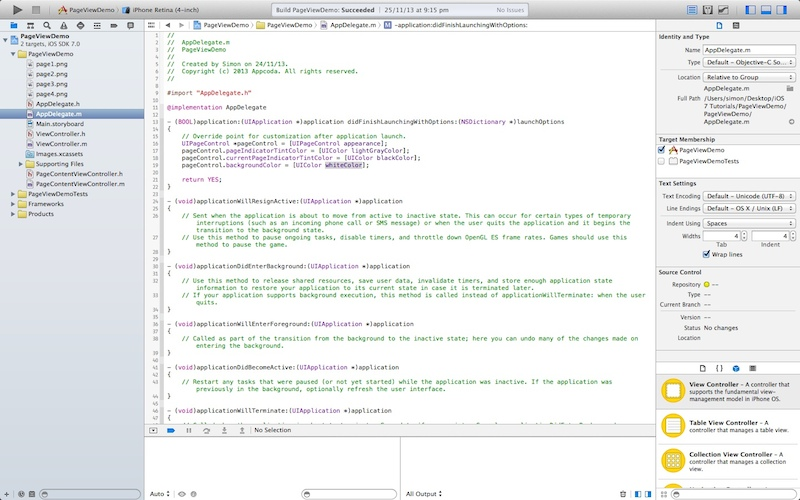 Sample Xcode Interface