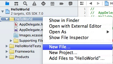 Xcode 5 Add New File