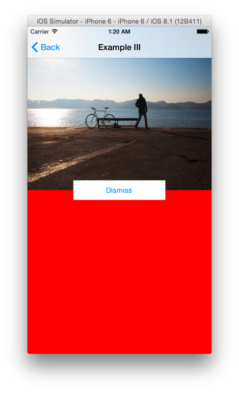 Creating Simple View Animations in Swift | iOS Tutorial