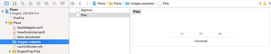 xcode-image-asset