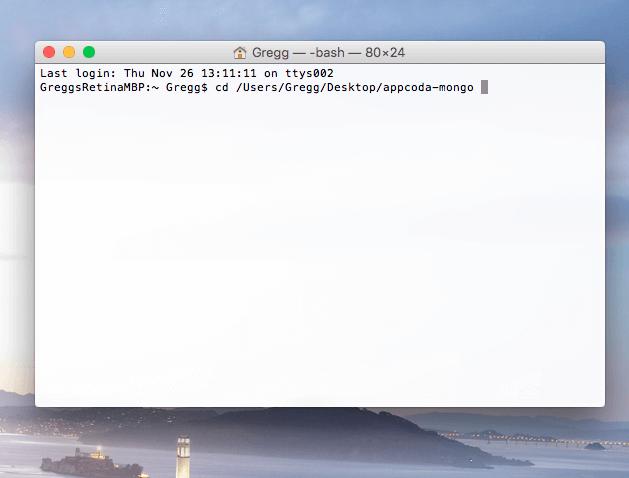 Terminal on Mac