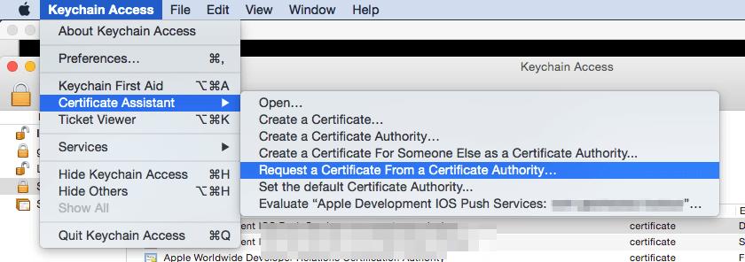 t48_1_certificate_assistant_menu