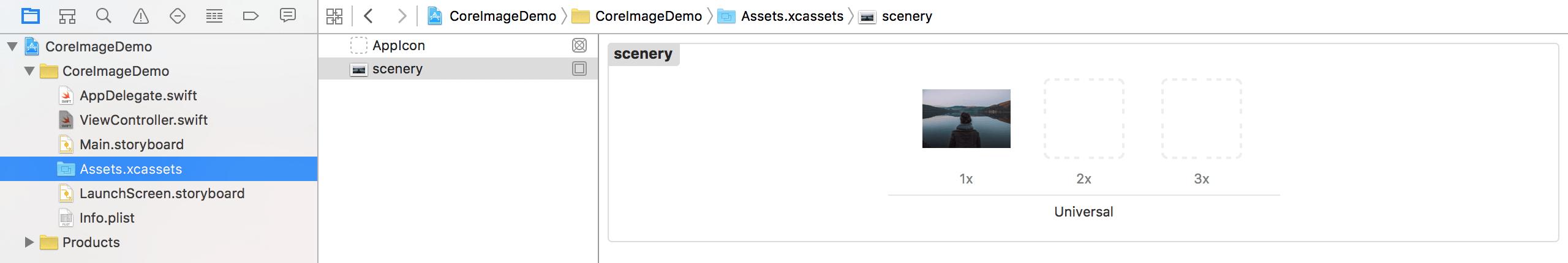 core-image-asset
