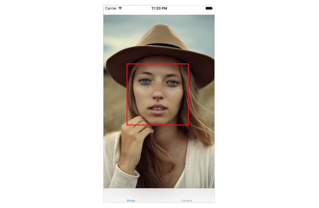 face-detection-result