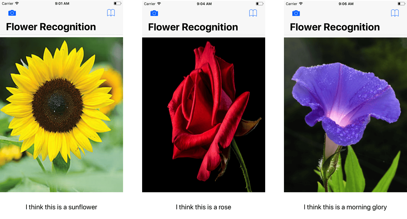 flower-recognition-app-demo
