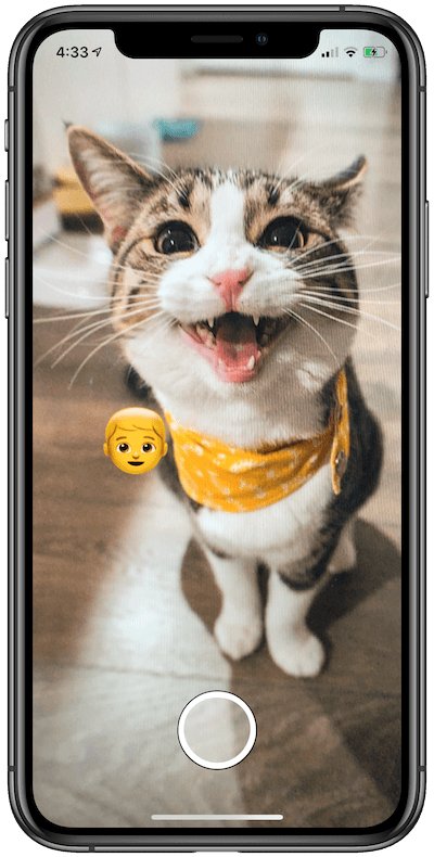 Vision Framework: Working with Text and Image Recognition in iOS 13 5