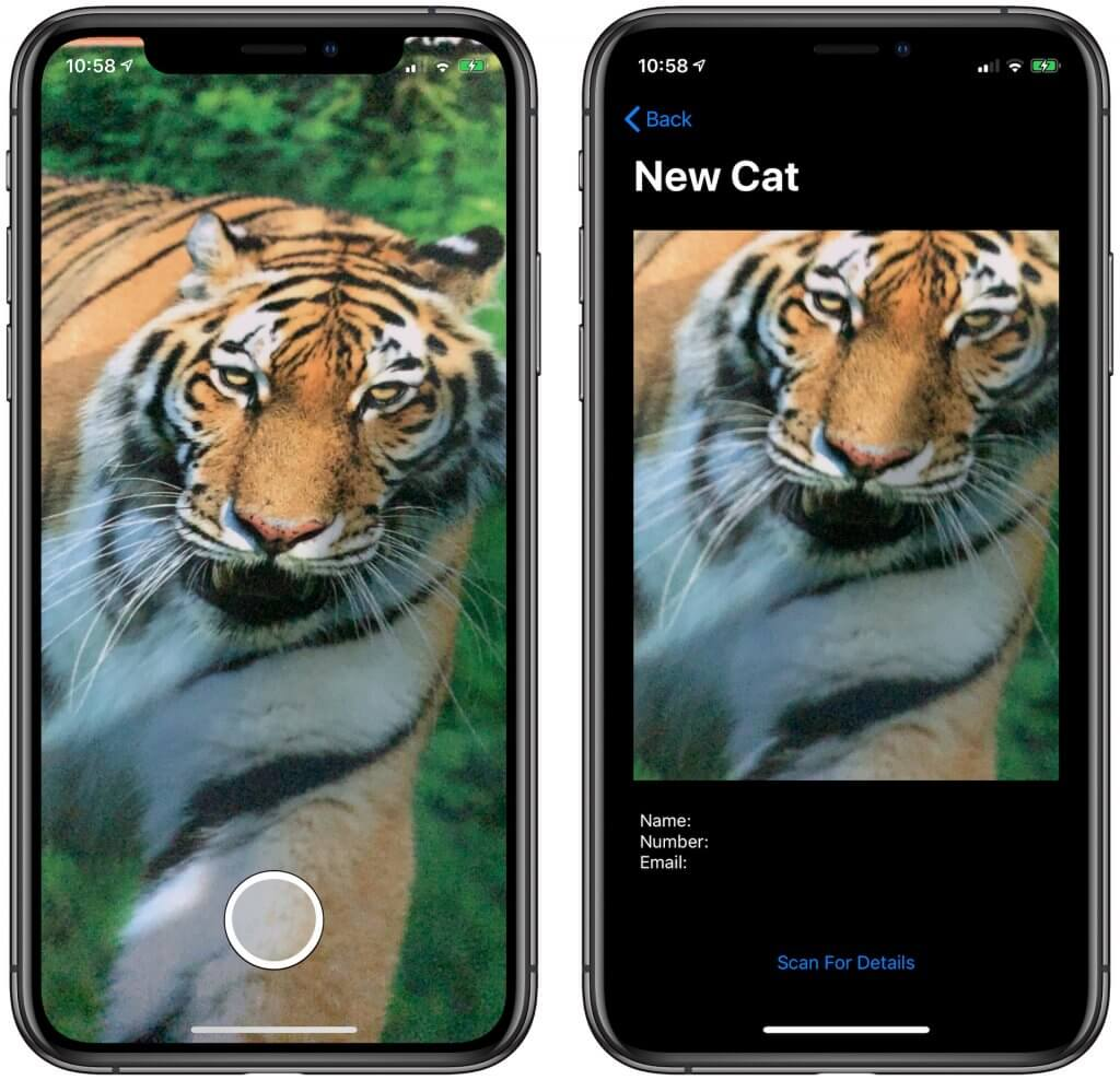 Vision Framework: Working with Text and Image Recognition in iOS 13 2