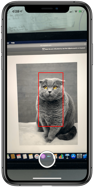 Vision Framework: Working with Text and Image Recognition in iOS 13 4