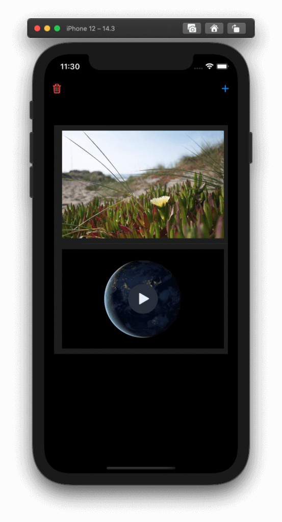 phpicker-ios14-import-video