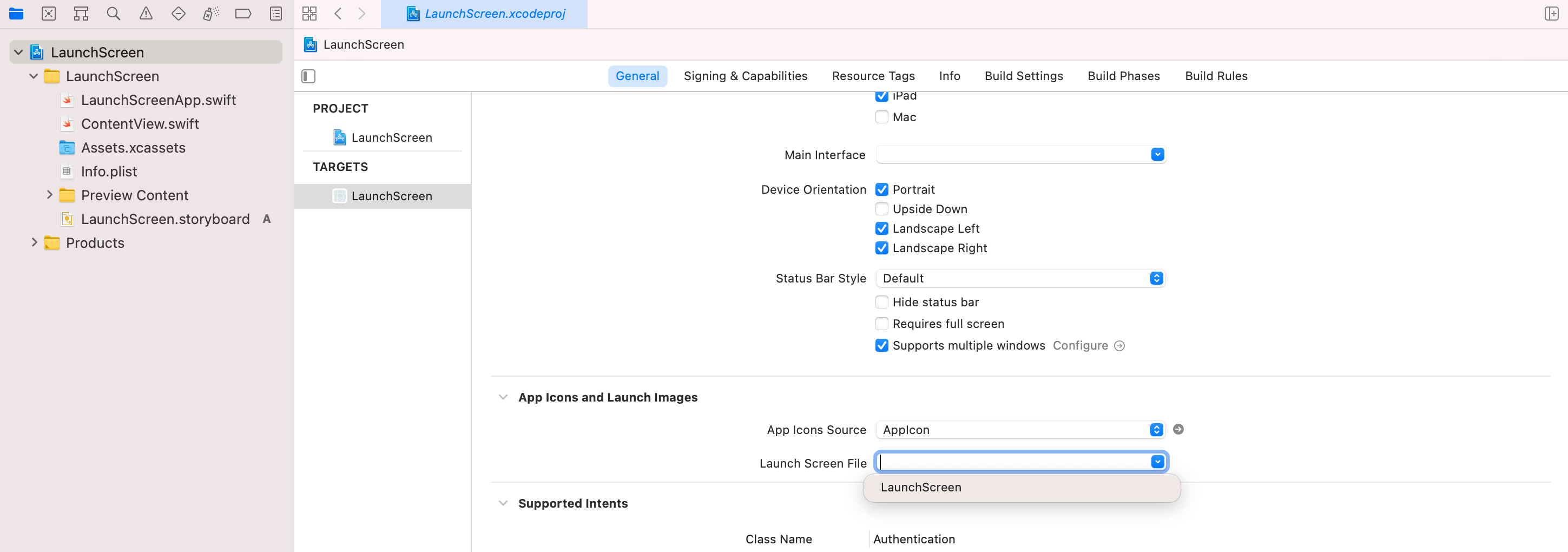 Launch Screen - Setting the project option